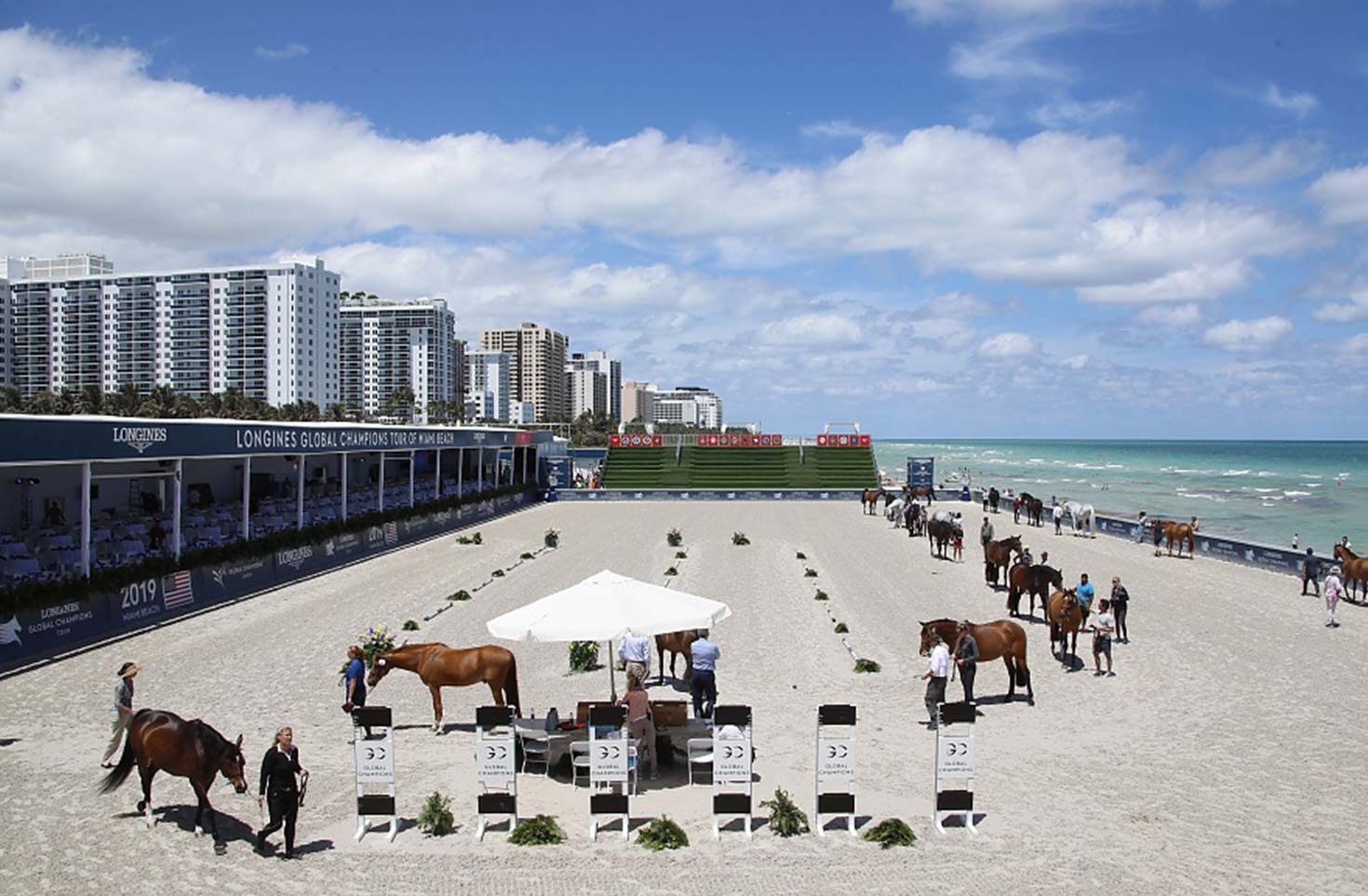 Miami-Beach-vet-check