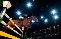 Showmakers Equestrian partners with AJTL to launch on Free to Air TV