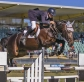 Local rider Andrew Inglis stars at Hawkesbury Show