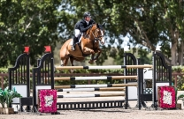 Billy Raymont and Oaks Redwood heading to Paris for World Cup