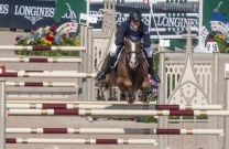 Oaks Redwood sold to Verlooy Stables