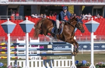 Competition heats up at Sydney Royal