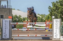 Brooke Langbecker and Quintago 1 shine in Sydney World Cup Qualifier