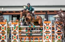 A thrilling climax for World Cup Jumping this coming weekend at Boneo
