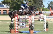 Clint Beresford and Emmaville Jitterbug officially win the 2016 World Cup Qualifier