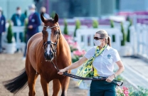 Aussie horses pass inspection in Tokyo