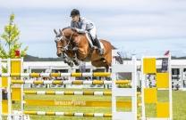 Australian Jumping Horses of 2018 - Quero Quero