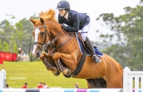 Australian Jumping Horses of 2018 - Flaire