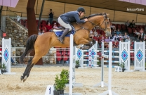 Australian Jumping Horses of 2018 - Franklin's Peace