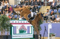 Competition will kick off at Waratah Showjumping