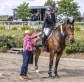 Jumping Equitation – promoting quality jumping