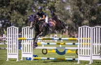 Sydney Show Jumping Club show off magnificent grounds at Summer Championships