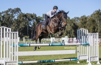 Riders welcomed back to Sydney Showjumping Club