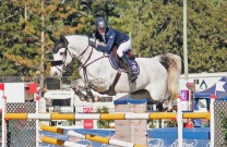 The sun shines on the Pryde's EasiFeed Gatton World Cup Show