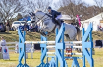 Sydney ShowJumping Club jumps into Spring
