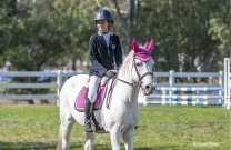 Glorious Comp Day at Sydney Showjumping Club