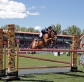Brilliant performance by Aussies in $2.5M 1.70m Rolex GP at Spruce