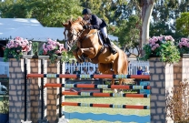 Rowan Willis and Baccus take out the CSI3* at Split Rock
