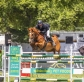 An exciting weekend at The Elms World Cup Show