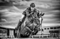 Australia's top riders battle it out at the Boneo Park Cup Show
