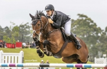 Australian Jumping Horses of 2018 - Cavalier Du Rouet
