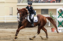 Sydney Maynard does us proud at Taiwan borrowed horse event