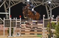 Australian Jumping Horses of 2018 - Vahlinvader