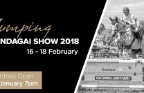 Gundagai Show 2018 Showjumping