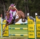 Eventers vs Showjumpers at Wallaby Hill Extravaganza this weekend